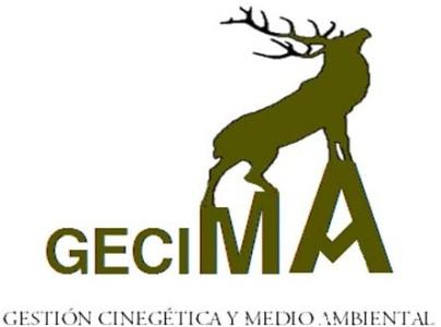 GECIMA logo provisional